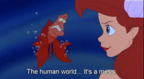 Ariel the human world